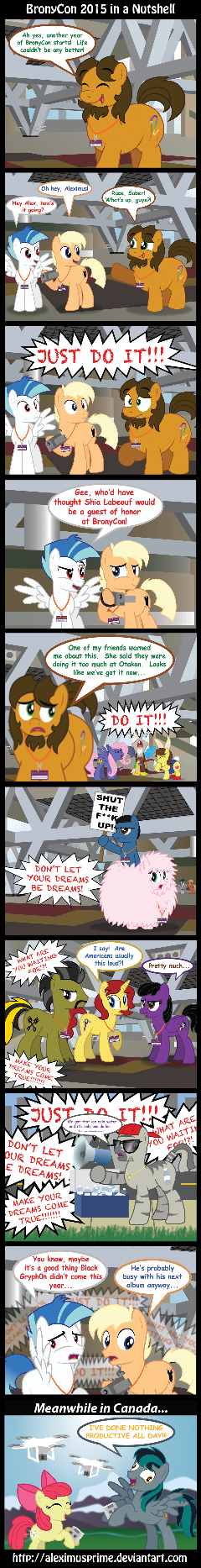 BronyCon 2015 in a Nutshell