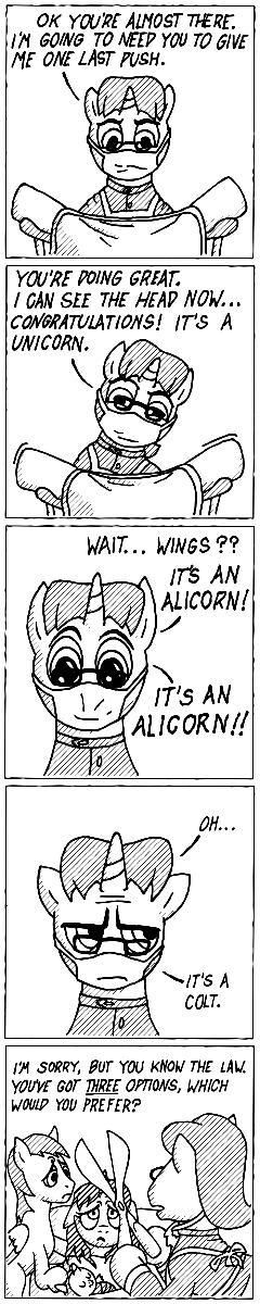Alicorndrocide - Equestrian Life#11