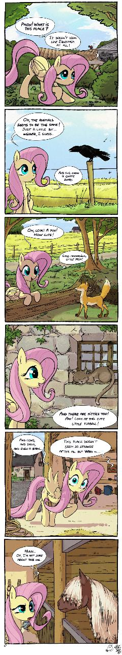 MLP Meets Real World: Similarities