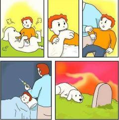 Il avait goûté à la chair canine