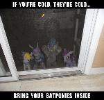 This has been a Batpony PSA