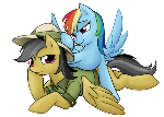 Rainbow Dash with Daring Do