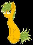 Pineapple Pone