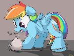 Confused Dashie
