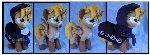 Commission: Cookie Princess - Gari OC Custom Plush