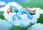 Sleepy Dashie