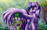 Rainy Books