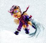 SnowScoots