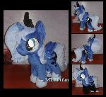 filly Luna with shoes and socks