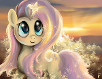 Fluttershy Rocks Without The Rainbow