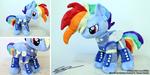 Wastes Rainbow Dash - 14 inch Pony Plushie