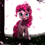 Pinkie and the Cherry Blossom Tree