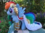 My Little Pony Gala Dress Rainbow Dash