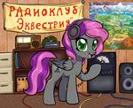 Radio clubhouse Equestria