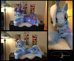 A great and powerful pony!!