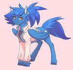 Twitter Pony