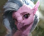 Silverstream Portrait