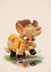 Little Raincoat