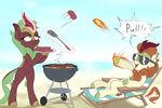 BBQ-T's