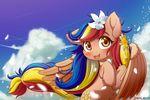 Philippine Pony Pearl Shine