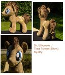 Dr. Whooves Plushie (40cm)