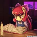 ABP - Engrossed in Studies