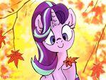 Feel autumn