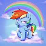 Rainbow Dash - My little chunky pony