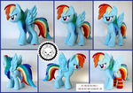 + Plush Commission 6 of 7: Rainbow Dash w/socks +