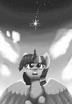 Wishing Upon The Stars