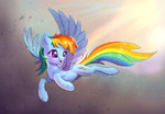 Rainbow Dash is flying