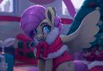 Santa Fluttershy