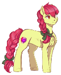 Adult Applebloom
