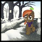 The winter Button