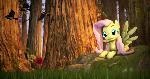 {SFM} MLP: Fluttershy Day