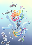 Diving Dashie