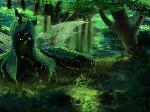 Chrysalis in the Forest