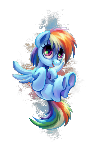 little Dashie