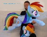 Lifesize Rainbow Dash 50 inches 3D lashes