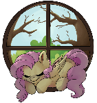 Fluttershy's Window