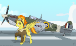 Spitfire and the spitfire