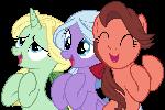 Bimbettes ponies