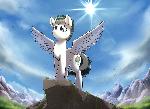 Pony On A Rock