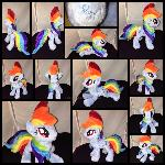 MLP 10 in Floppy Rainbow Dash Plushie-EFNW 2016