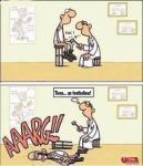 Chez le medecin