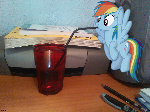 Rainbow Dash stop drinking my soda!