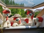 Bright Mac - MLP Plush - Sitting, Lying and normal