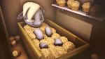 [SFM] Muffin Tops.