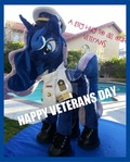 mlp plushie Happy Veterans Day SPECIAL $50 OFF