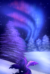 Winter's Night (CONTEST)
